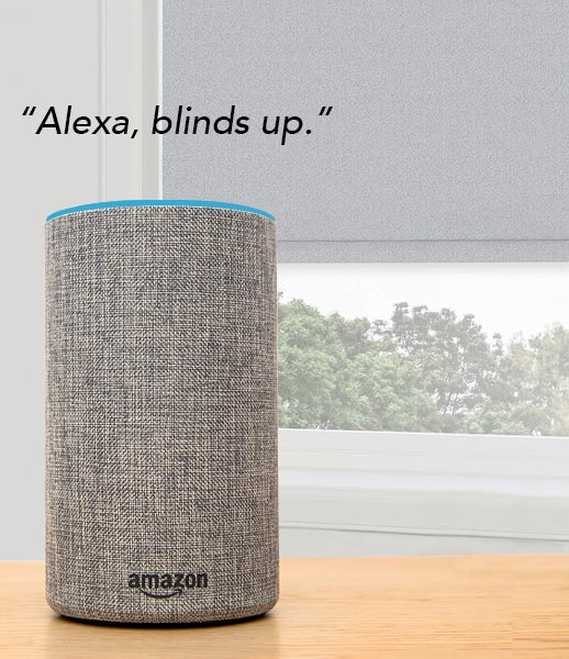 Alexa smart blinds